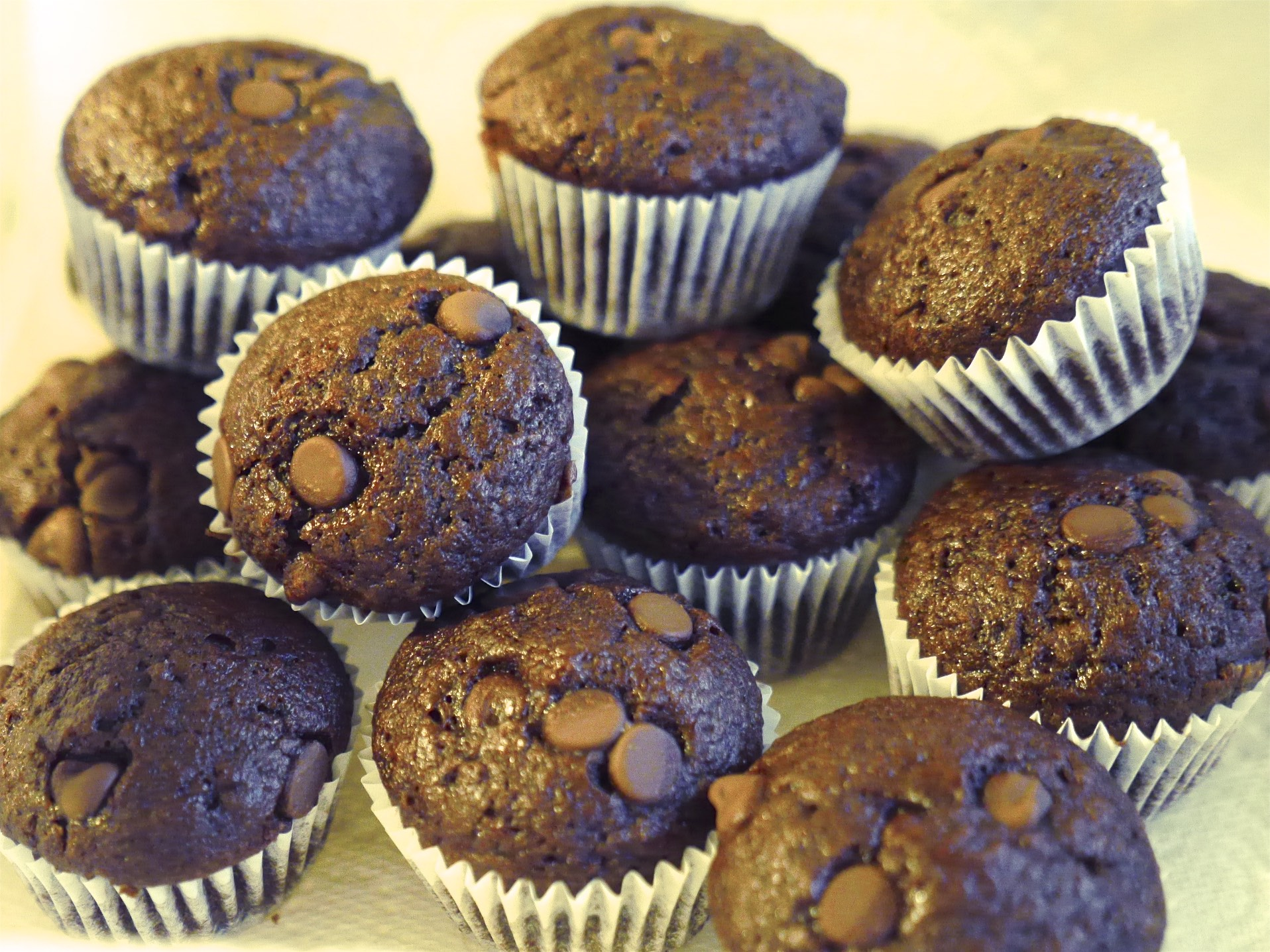 Double Chocolate Mini Muffins